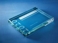 Frost & Sullivan 2020 Best Practices Virtual Awards