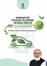 E-100 project marks World Environment Day